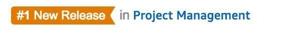 Number 1 New Release Banner Proj Mgmt
